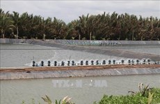 Tra Vinh to expand aquaculture area by 2,500 hectares to 2030
