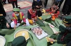 Spring colours featured at National Village for Ethnic Culture and Tourism