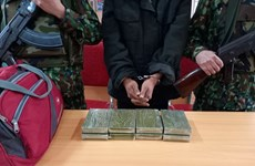 Drug trafficker caught in Nghe An