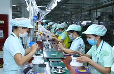 Nearly 47 percent of Japanese firms in Vietnam plan expansion
