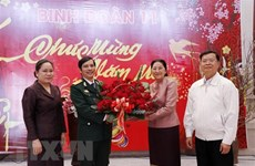 Lao top legislator pays Tet visit to Vietnam's officers, soldiers working at Laos' NA House