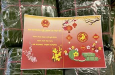 Vietnamese across the world celebrate traditional Lunar New Year