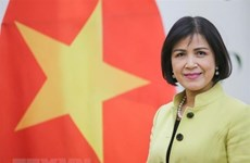 Vietnam supports South Centre's role in promoting cooperation between developing countries