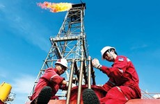 PVEP to invest 380 million USD in exploring, exploiting new oil fields