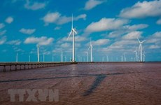 Hapaco eyes investment in 4-trillion-VND wind power project