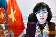 Ambassador stresses Vietnam's policy of promoting women's role