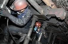 Coal companies report rises in revenues but declining profits