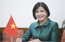 Vietnam supports UNCTAC future priorities