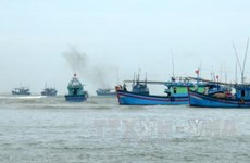Ba Ria-Vung Tau to get tougher on illegal fishing in foreign waters