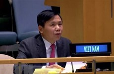 Vietnam urges int'l community to work with ASEAN in Myanmar issue