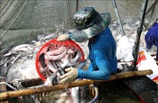 Aquatic exports rise 2.2 percent in two months