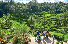Indonesia: Tourism continues suffering in January