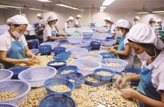 US - largest agro-forestry-fishery importer of Vietnam in Jan-Feb