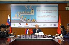 Vietnam, Slovenia eye cooperation potential in mechanical engineering