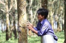 Rubber companies set lower profit targets for 2021