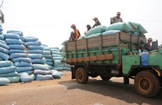 Cambodia's agricultural product exports surge in two months