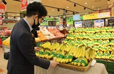 Bringing Vietnamese goods into foreign distribution channels