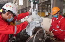 PetroVietnam maintainsgood  operation in first two months