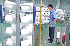 Vietnamese textile industry sees huge export opportunities