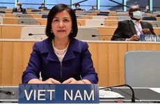 Vietnam highlights attainments in children, PWDs' rights promotion