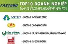 List of Vietnam's 500 fastest-growing firms unveiled
