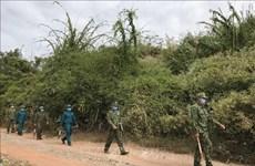 Vietnam intensifying border surveillance to prevent illegal entry, exit: Spokesperson