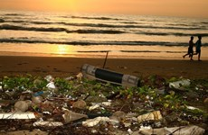Vietnamese wins ASEANO sponsorship for plastic pollution research
