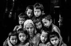 Vietnamese photographer wins award at international contest