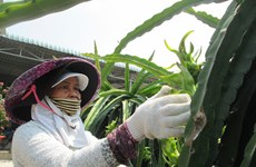 Agriculture, aquaculture firms focus on growing their own raw materials