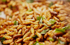Vietnam authorised to export insect-based food to EU