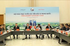 Binh Duong: Promoting Vietnam-China investment ties