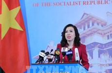 Foreign Ministry spokesperson comments on international issues
