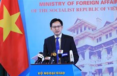 Vietnam to priotitise promotion of UN relations with regional organisations as UNSC President