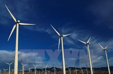 Vietnam promotes renewable energy for sustainable development