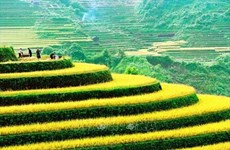 11th International Photo Contest in Vietnam launched