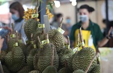 Thailand to become world's top durian producer in five years