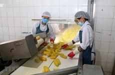 Agriculture export value up 20 percent in Q1