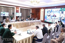 Vietnam attends ADSOM+ Working Group meeting