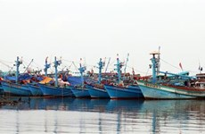 Kien Giang making every effort to fight IUU fishing