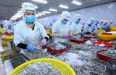 E-commerce platform a boost for Vietnam's exports to EU