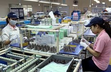 Vietnam, Singapore beef up investment links in industry