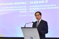 Experts discuss post-COVID-19 global major trends, recommendations for Vietnam