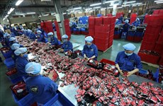 Role as global manufacturing hub to fuel Vietnam's growth: Oxford Economics
