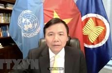 Vietnam voices concerns over escalating violence in Yemen