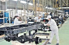 Workforce critical to feed industries in rapidly developing Vietnam: experts