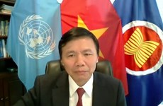 Vietnam concerned about recent developments in Somalia