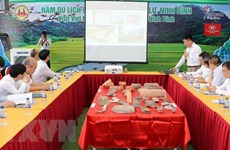 Archaeological excavation, research at Hoa Lu ancient capital reviewed