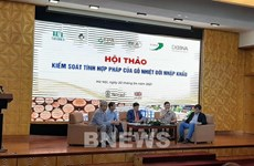 Workshop discusses control of risks in tropical timber imports