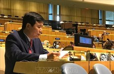 Vietnam backs initiatives to promote Middle East peace process: ambassador