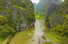 Agritourism brings new sources of income to farmers in Ninh Binh
